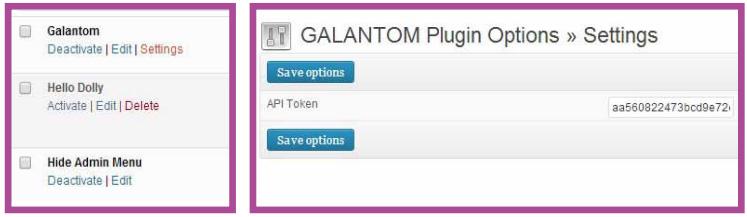 plugin-galantom-token